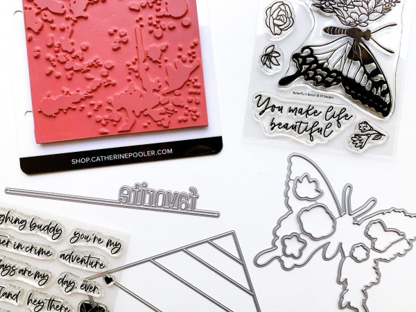 bundle of craft products including background stamp, die and butterfly stamp set